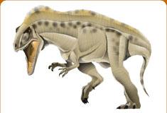 موسوعة عــالــم الديناصورات ...... Dinosaurs World وفيديو dc_card_acroc.jpg