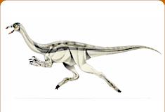 موسوعة عــالــم الديناصورات ...... Dinosaurs World وفيديو dc_card_archa2.jpg