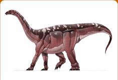 موسوعة عــالــم الديناصورات ...... Dinosaurs World وفيديو dc_card_blika.jpg