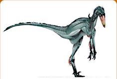 موسوعة عــالــم الديناصورات ...... Dinosaurs World وفيديو dc_card_borog.jpg