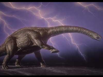 http://us.i1.yimg.com/us.yimg.com/i/ligans/dinosaurs/dc_card_bronto1_big.jpg