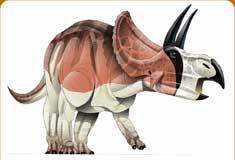 موسوعة عــالــم الديناصورات ...... Dinosaurs World وفيديو dc_card_dicer.jpg