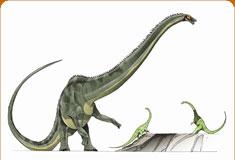 موسوعة عــالــم الديناصورات ...... Dinosaurs World وفيديو dc_card_diplo.jpg