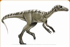 موسوعة عــالــم الديناصورات ...... Dinosaurs World وفيديو dc_card_eorap.jpg