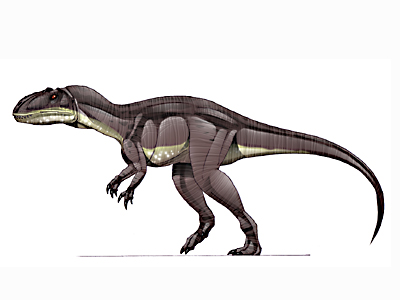http://us.i1.yimg.com/us.yimg.com/i/ligans/dinosaurs/dc_card_xuanhanosaurus_big.jpg