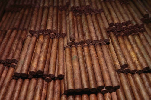 Stacks of cigars in a cigar factory